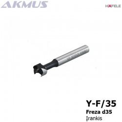 Y-F/35