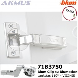 Vidinis-BLUM